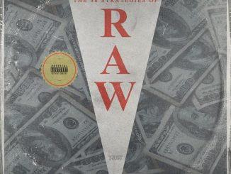 38 Strategies Of Raw - 38 Spesh